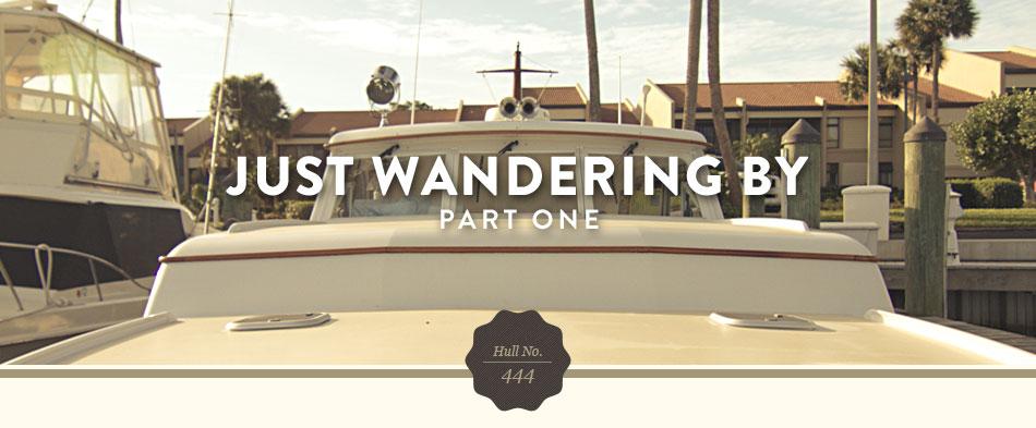 Wanderer Intro image